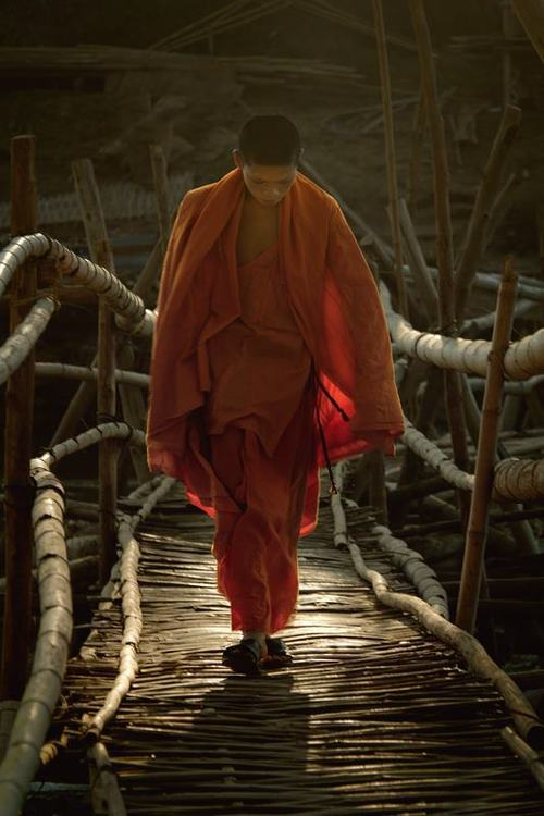 YOUNG MONK EDITED