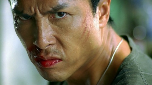 DONNIE YEN FACE SHOT
